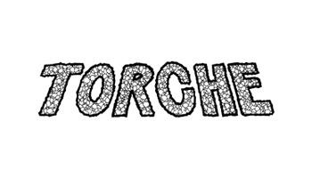 _0031_Torche